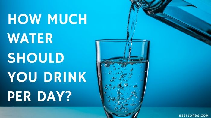 How Much Water Should You Drink Per Day? 1