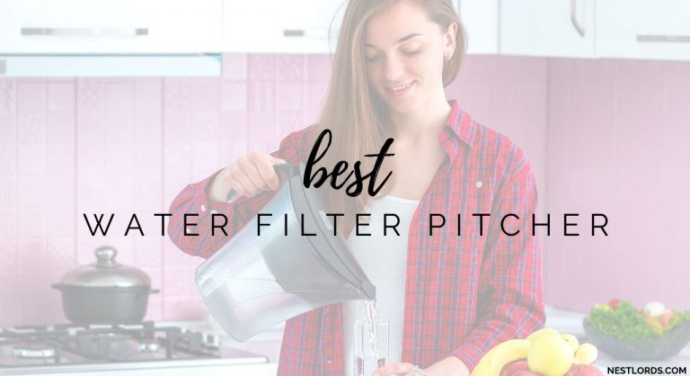 Best Water Filter Pitcher in 2020