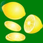 19 Perfect lemon gift ideas