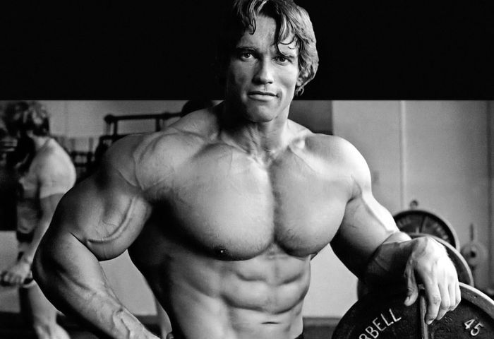 Arnold Schwarzenegger Biography 2020 Nestlords