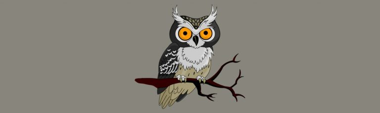 Owl Gifts Guide: Gift Ideas for the Owl Obsessed