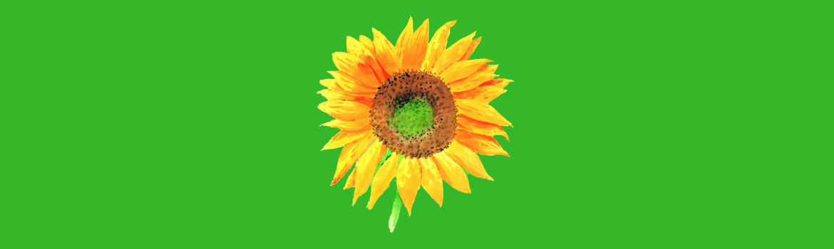 Sunflower Themed Gifts