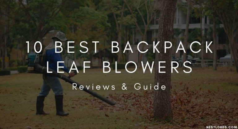 10 Best Backpack Leaf Blowers 2020 – Reviews & Guide