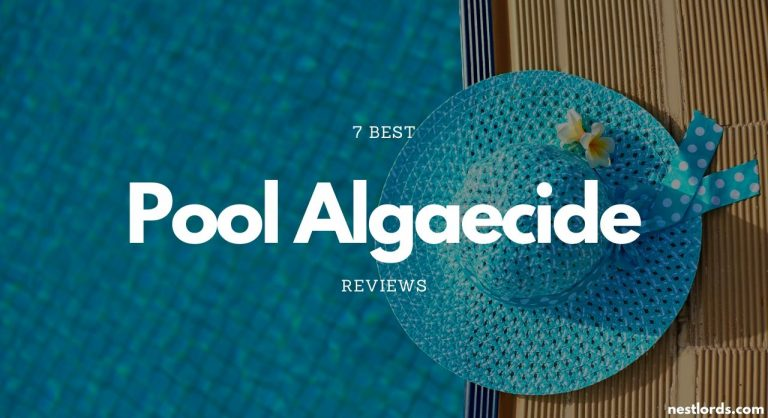 7 Best Pool Algaecide 2020 Reviews