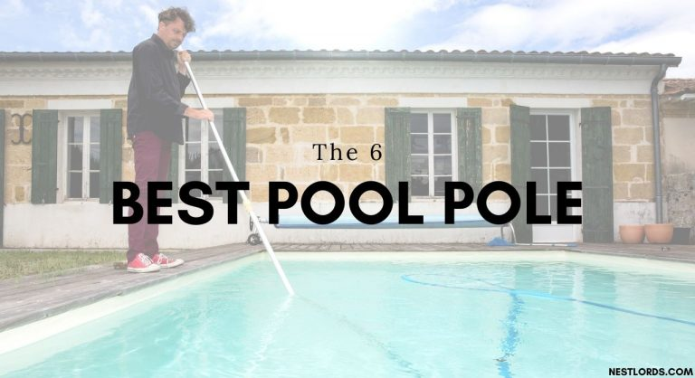 The 6 Best Pool Pole in 2020 Reviews