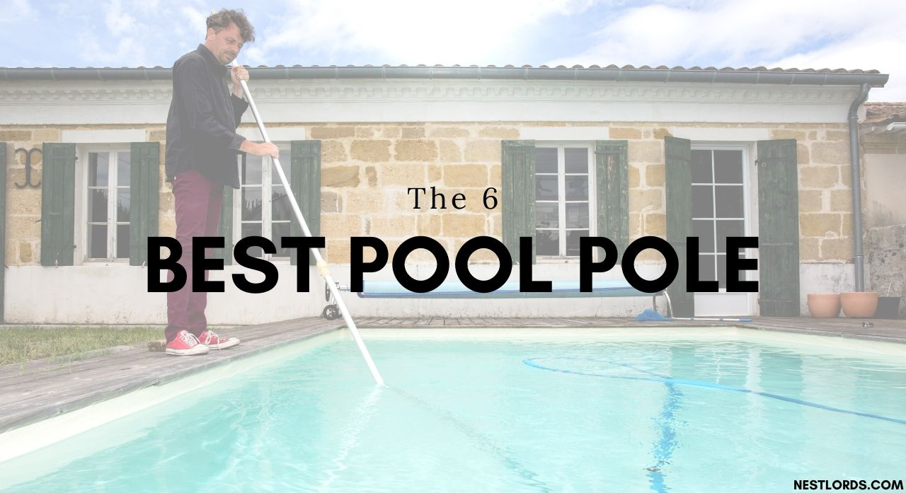 The 6 Best Pool Pole in 2020 Reviews 1