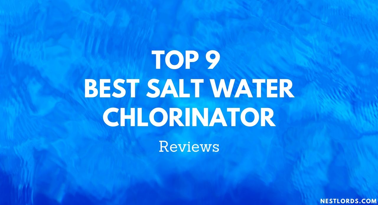 Top 9 Best Salt Water Chlorinator 2020 Reviews 1