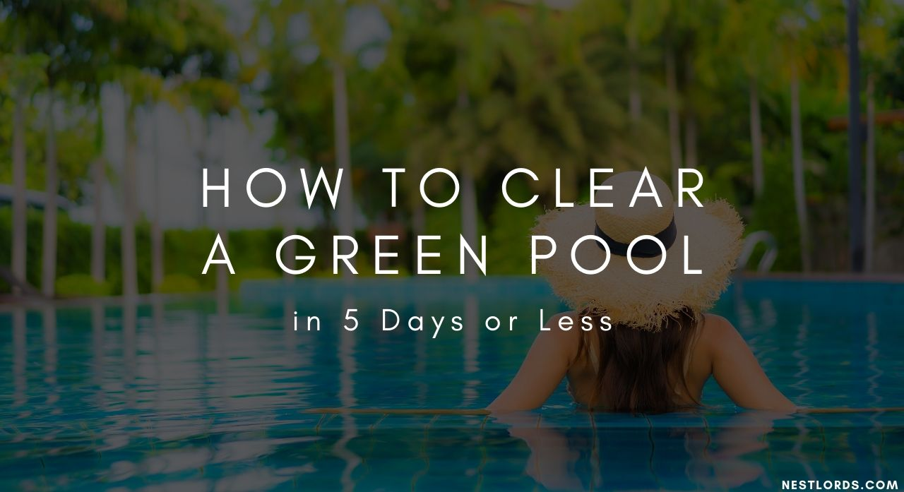 How to Clear a Green Pool in 5 Days or Less 1