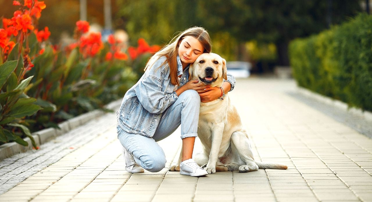 Anxiety Medication for Dogs 1