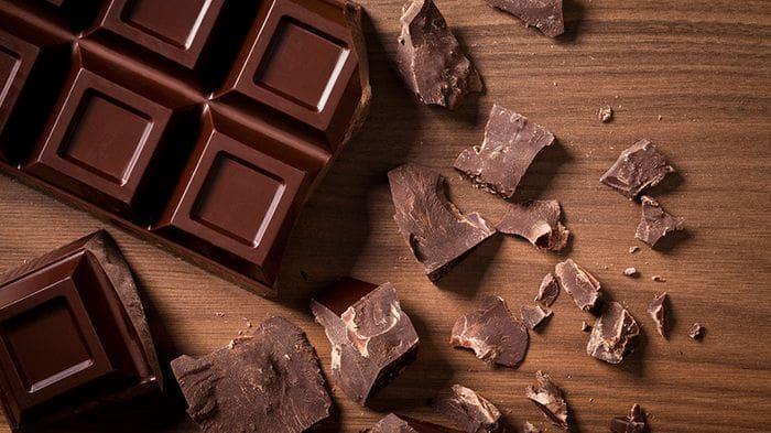 Dog Ate Chocolate 4