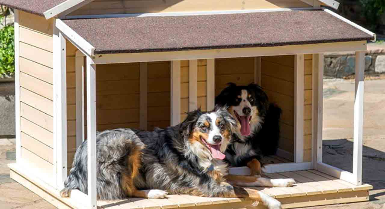 7 Best Insulated Dog Houses 2020 - Winter or Hot Summer Solutions 1