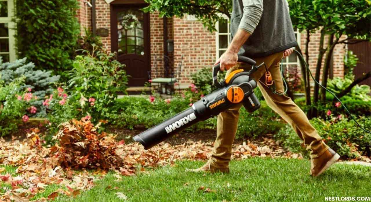 12 Best Leaf Blower with Vacuums and Mulcher Options in 2020 1