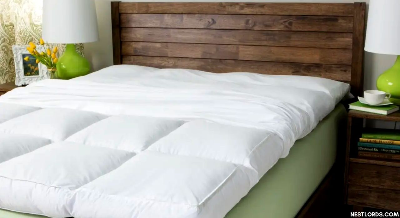 Top 8 Best Mattress Toppers for Back Pain in 2020 1