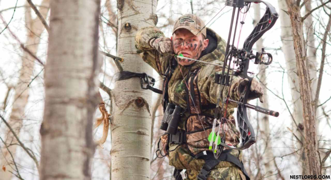 5 Best Tree Stand Harness For Safety Hunting in 2020 1