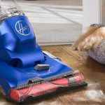 Top 9 Best Pet Carpet Cleaners in 2020 to Clean Pet Stains & Odor 21