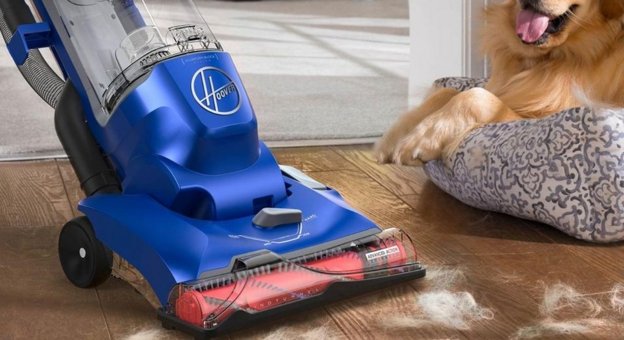 8 Best Vacuums for Pet Hair and Hardwood Floors in 2020 1