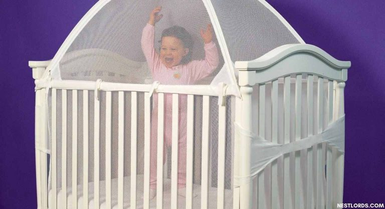 Best Crib Tent To Keep Cats Out Of Crib & Pack N Play 2021