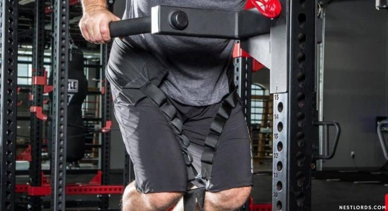 Best Dip Belt for Weights – Tested & Reviewed in 2020