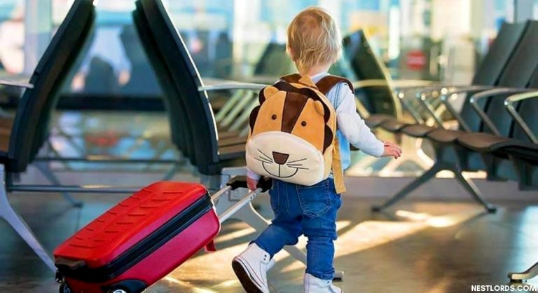 The 10 Best Kids' Luggage in 2020: Review & Guide