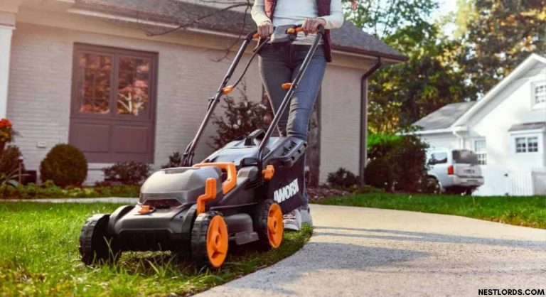 Best Lawn Mower in 2020 – All You Need to Know