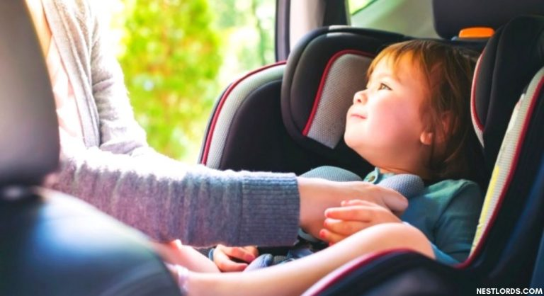 Best Non Toxic Car Seats without Flame Retardants Reviews (2021)