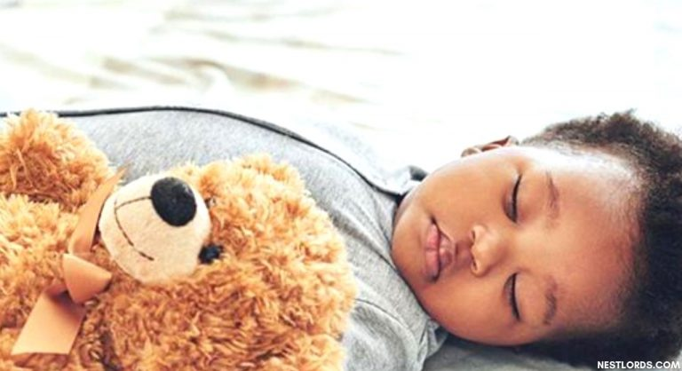 Best Stuffed Animal For Baby To Sleep With And Cuddle (2021 Review)