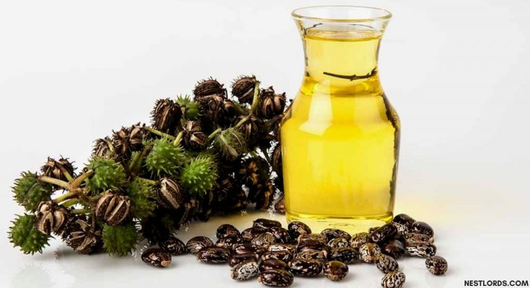 The Best Castor Oil for Hair Growth & Thickness (Oct. 2020)