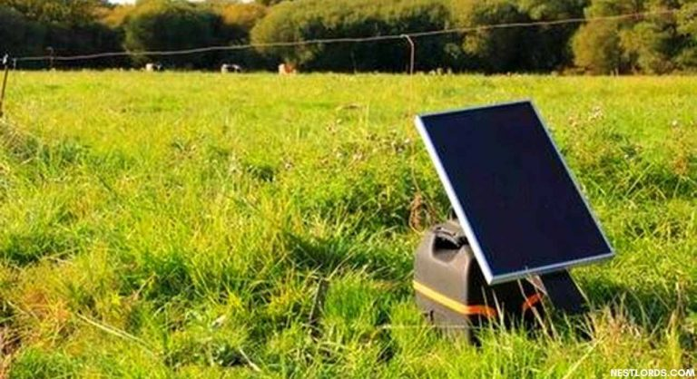 The Best Solar Fence Charger in 2020 Reviews & Buying Guide