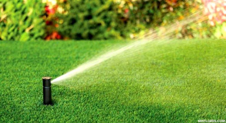 Top 8 Best Sprinkler Heads for Lawns in 2020: Reviews, Types & Guide