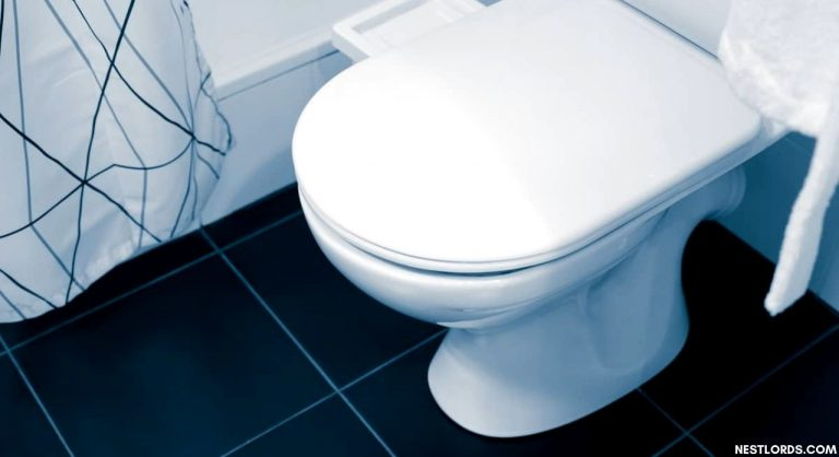 The Best Toilet Seat For Heavy People in 2021: Oversized, Heavy-Duty, Extra Large